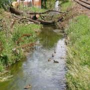 Hosszúréti-patak